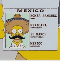 Homer: MEXICO  HOMER SANCHEZ  NAME  MEXICANA  NATIONALITY  20 MARCH  OATE of ISSUE  MEXICO  AUTHORITY
