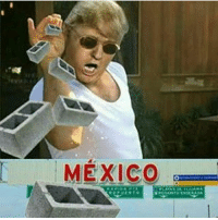 Memes, Mexico, and 🤖: MEXICO itstuesday tuesday tuesdays tgit fbt tbt nusret usmexicoborder election2016 inaguration2017 enriquepeñanieto presidentelect 😎 petty fuckery mood donaldtrump belike only three days til I become the president of the unitedstates mexico 😂👆🏻😩
