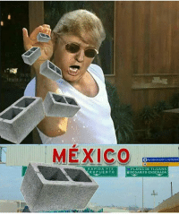 Constitution, Mexico, and Wings: MEXICO  SD Autodeclaracony autobuses  RAPID A PTE  ROPUERTO  ROSARITO ENSENADA This is my favorite meme of the week for sure 😂😂😂 I hope y'all get where it comes from. nusret nusretsteakhouse buildthewall buildthatwall liberals libbys democraps liberallogic liberal ccw247 conservative constitution presidenttrump nobama stupidliberals merica america stupiddemocrats donaldtrump trump2016 patriot trump yeeyee presidentdonaldtrump draintheswamp makeamericagreatagain trumptrain maga Add me on Snapchat and get to know me. Don't be a stranger: thetypicallibby Partners: @tomorrowsconservatives 🇺🇸 @too_savage_for_democrats 🐍 @thelastgreatstand 🇺🇸 @always.right 🐘 TURN ON POST NOTIFICATIONS! Make sure to check out our joint Facebook - Right Wing Savages Joint Instagram - @rightwingsavages Joint Twitter - @wethreesavages Follow my backup page: @the_typical_liberal_backup