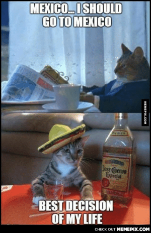 I should go to Mexico…omg-humor.tumblr.com: MEXICOI SHOULD  GO TO MEXICO  Preminm  Jose Cuervo  Especial  BEST DECISION  OF MY LIFE  CНECK OUT MЕМЕРIХ.COM  МЕМЕРIХ.Сом I should go to Mexico…omg-humor.tumblr.com