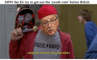 fellow kids: MFW the EU try to get out the youth vote' before BrExit  USIC BAND  HOW DO YOU DO, FELLOW KIDS?