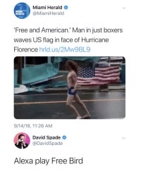 David Spade: Miami Herald  @MiamiHerald  MIAMI  HERALD  Free and American.' Man in just boxers  waves US flaa in face of Hurricane  Florence hrld.us/2Mw9BL9  9/14/18, 11:26 AM  David Spade  @DavidSpade  Alexa play Free Bird