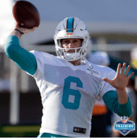 Jay, Memes, and Nfl: MIAW  NFL  TRAINING  CAMP  2017 Jay Cutler takes the field for the first time with the @MiamiDolphins! 🐬🐬 #NFLTrainingCamp https://t.co/Y8yU7XfLQE