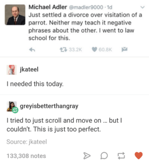 Divorces and parrots: Michael Adler @madler9000-1  Just settled a divorce over visitation of a  parrot. Neither may teach it negative  phrases about the other. I went to law  school for this.  33.2K 60.8K  jkateel  I needed this today.  greyisbetterthangray  I tried to just scroll and move on. butl  couldn't. This is just too perfect.  Source: jkateel  133,308 notes Divorces and parrots