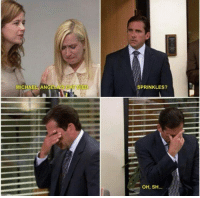 The Office: MICHAEL ANGELA'S CAT DIED  SPRINKLES?  OH, SH... The Office