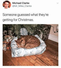 Christmas, Memes, and Michael: Michael Clarke  @Mr_Mike Clarke  Someone guessed what they're  getting for Christmas. What a clever sausage