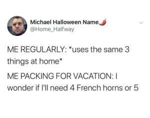 meirl: Michael Halloween Name,  @Home_Halfway  ME REGULARLY: *uses the same 3  things at home*  ME PACKING FOR VACATION: I  wonder if 'll need 4 French horns or 5 meirl