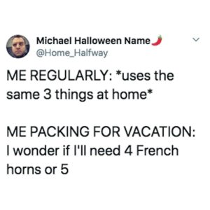 Me_irl by The-Lazy-Lemur MORE MEMES: Michael Halloween Name.  @Home_Halfway  ME REGULARLY: *uses the  same 3 things at home*  ME PACKING FOR VACATION:  I wonder if 'll need 4 French  horns or 5 Me_irl by The-Lazy-Lemur MORE MEMES
