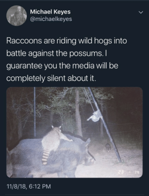 Memes, Michael, and Wild: Michael Keyes  @michaelkeyes  Raccoons are riding wild hogs into  battle against the possums.  guarantee you the media will be  completely silent about it.  14  11/8/18, 6:12 PM The battle is nigh via /r/memes https://ift.tt/2qFoemX
