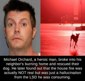 Fire, Home, and House: Michael Orchard, a heroic man, broke into his  neighbor's burning home and rescued their  dog. He later found out that the house fire was  actually NOT real but was just a hallucination  from the LSD he was consuming Such a hero!!!