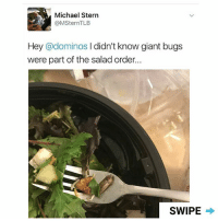 Memes, Vegan, and Domino's: Michael Stern  (a MSternTLB  Hey @dominos  I didn't know giant bugs  were part of the salad order...  SWIPE When a vegan eats at @dominos