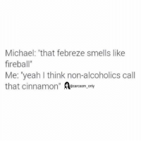"""⠀: Michael: """"that febreze smells like  fireball""""  Me: """"yeah I think non-alcoholics call  that cinnamon  @sarcasm only ⠀"""