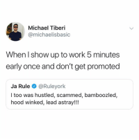 Ja Rule, Work, and Michael: Michael Tiberi  @michaelisbasic  When I show up to work 5 minutes  early once and don't get promoted  Ja Rule@Ruleyork  I too was hustled, scammed, bamboozled,  hood winked, lead astray!!! Hate when I'm lead astray!!!!!