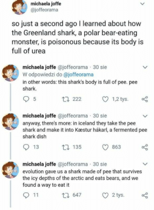 : michaela joffe  @joffeorama  just a second ago I learned about how  the Greenland shark, a polar bear-eating  monster, is poisonous because its body is  full of urea  michaela joffe @joffeorama 30 sie  W odpowiedzi do @joffeorama  in other words: this shark's body is full of pee. pee  shark.  t 222  5  1,2 tys.  michaela joffe @joffeorama 30 sie  anyway, there's more: in iceland they take the pee  shark and make it into Kæstur hákarl, a fermented pee  shark dish  13  t 135  863  michaela joffe @joffeorama 30 sie  evolution gave us a shark made of pee that survives  the icy depths of the arctic and eats bears, and we  found a way to eat it  11  2 tys.  t 647