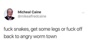 Fuck, Snakes, and Angry: Micheal Caine  @mikealfredcaine  fuck snakes, get some legs or fuck off  back to angry worm town Me irl
