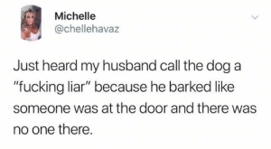 "Dank, Fucking, and Husband: Michelle  @chellehavaz  Just heard my husband call the dog a  ""fucking liar"" because he barked like  someone was at the door and there was  no one there."