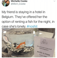 Being Alone, Belgium, and Memes: Michelle Cooke  @Mich Cooke  My friend is staying in a hotel in  Belgium. They've offered her the  option of renting a fish for the night, in  case she's lonely. #noshit  Alone in your room and  want company?  RENT-A-FISH  th Maybe the fish is lonely and renting you for the night?