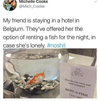 Being Alone, Belgium, and Memes: Michelle Cooke  @Mich_Cooke  My friend is staying in a hotel in  Belgium. They've offered her the  option of renting a fish for the night, in  case she's lonely. #noshit  Alone in your room and  want company?  RENT-A-FISH  3.50/ nig. 🤣