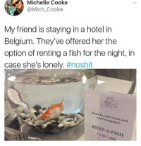 Fishes are wholesome: Michelle Cooke  @Mich_Cooke  My friend is staying in a hotel in  Belgium. They've offered her the  option of renting a fish for the night, in  case she's lonely. #noshit  Alone in your room and  want company?  RENT-A-FISH  3.50/ night Fishes are wholesome