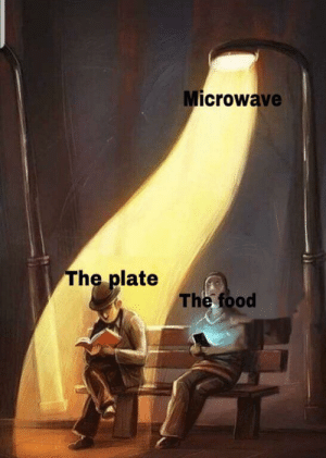 browsedankmemes:Ah that's hot: Microwave  The plate  The food browsedankmemes:Ah that's hot