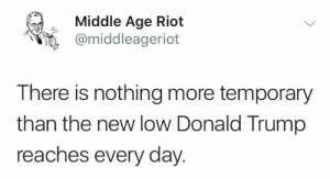 Donald Trump, Memes, and Riot: Middle Age Riot  @middleageriot  There is nothing more temporary  than the new low Donald Trump  reaches every day.