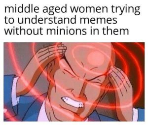 middle aged: middle aged women trying  to understand memes  without minions in them