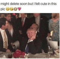 Dank Memes, Pics, and The Best: might delete soon but felt cute in this  pic @donaldtrumpdoingthings has the best trump memes 😘😘😘😘😘😘