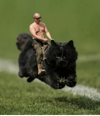 Mightier than the Russian Bear.