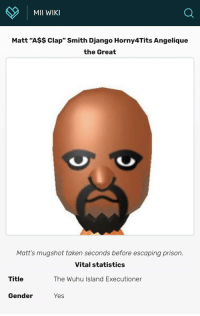 "Matt: MII WIKI  a.  Matt ""A$$ Clap"" Smith Django Horny4Tits Angelique  the Great  Matt's mugshot taken seconds before escaping prison.  Vital statistics  The Wuhu Island Executioner  Title  Gender  Yes"