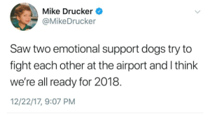 Meirl by MisakAttack FOLLOW 4 MORE MEMES.: Mike Drucker  @MikeDrucker  Saw two emotional support dogs try to  fight each other at the airport and I think  we're all ready for 2018.  12/22/17, 9:07 PM Meirl by MisakAttack FOLLOW 4 MORE MEMES.