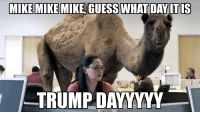Guess what day it is!: MIKE MIKE MIKE, GUESS WHAT DAY ITIS  TRUMP DAYYYY Guess what day it is!