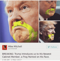 """Memes, Ugly, and Yo: Mike Mitchell  Follow  @sirmitchell  BREAKING: Trump Introduces us to His Newest  Cabinet Member, a Frog Painted on His Face.  2:36 AM 2 May 2017 yo I'm thinking of dying all my hair purple but I'm really not sure bc ppl are telling me it'd look cool but other ppl are like """"no it'll be ugly"""" edit: I'm doing it"""