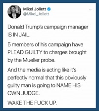 Add your name to our petition and help us fight this disaster: https://actionsprout.io/C870BA: Mikel Jollett  @Mikel_ Jollett  Donald Trump's campaign manager  IS IN JAIL.  5 members of his campaign have  PLEAD GUILTY to charges brought  by the Mueller probe  And the media is acting like it's  perfectly normal that this obviously  guilty man is going to NAME HIS  OWN JUDGE.  WAKE THE FUCK UP. Add your name to our petition and help us fight this disaster: https://actionsprout.io/C870BA