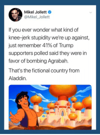 Agrabah: Mikel Jollett  @Mikel_Jollett  If you ever wonder what kind of  knee-jerk stupidity we're up against,  Just remember 41% of Trump  supporters polled said they were in  favor of bombing Agrabah.  That's the fictional country from  Aladdin.