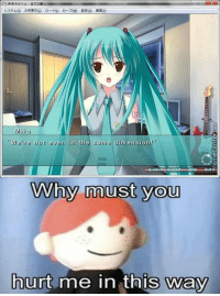 "Sad reality :(: Miku  ""We're not even in the same dimension!""  why must you  hurt me in this way Sad reality :("