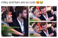 Cute, Memes, and 🤖: miley and liam are so cute