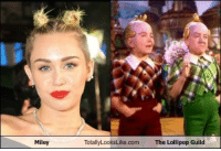 <p>Miley Totally Looks Like The Lollipop Guild</p>: Miley  TotallyLooksLike.com  The Lollipop Guild <p>Miley Totally Looks Like The Lollipop Guild</p>