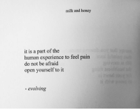 Experience, Pain, and Human: milk and honey  it is a part of the  human experience to feel pain  do not be afraid  open yourself to it  evolving