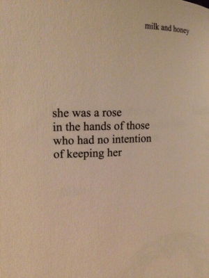 Intention: milk and honey  she was a rose  in the hands of those  who had no intention  of keeping her