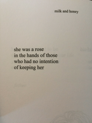 Rose, Her, and Honey: milk and honey  she was a rose  the hands of those  who had no intention  of keeping her  in