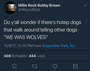 """LMFAO: Millie Rock Bobby Brown  @WoundGod  Do y'all wonder if there's hotep dogs  that walk around telling other dogs  """"WE WAS WOLVES""""  12/9/17, 12:50 PM from Edgewater Park, NJ  408 Retweets 444 Likes LMFAO"""