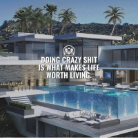 Crazy, Life, and Memes: MILLION AIRE MENTOR  DOING CRAZY SHIT  IS WHAT MAKES LIFE  WORTH LIVING *Double tap* if you agree! It's all about the experiences.✔️ - crazy life experiences millionairementor