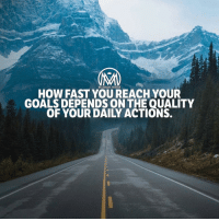 "Goals, Mediocre, and Memes: MILLIONAIRE MENTOR  HOW FAST YOU REACH.YOUR  GOALS DEPENDS ON THE QUALITY  OF YOUR DAILY ACTIONS. Execution and action two main ingredients when it comes to getting results. Whether it's a healthy body or thriving business it's paying attention to those daily details that will make a difference in being simply mediocre or reaching your goals. 👌 It's not about comparing or competition but we do have to face the fact that to rise to our full potential we have to give it our all. Even when we don't ""feel"" like doing something we have to come back to our ""why"" and determine if the effort will help us reach our goals. You have it within you to reach your full potential but it's up to you to decide if you're willing to tap into that power and make the effort day in and day out. 🤷‍♂️ - I know, I know… I drop the best content around. Jk! You're welcome! 😉 - millionairementor"