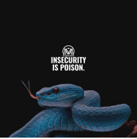 Antidote, Memes, and Success: MILLIONAIRE MENTOR  INSECURITY  IS POISON Sometimes what makes us insecure and vulnerable becomes the fuel we need to be overachievers. 💡 The antidote for a snakebite is made from the poison. 🐍 And the things that made you go backwards is the same force that will push you forward. - insecurity thecure success millionairementor