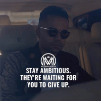 Follow @rohan_sheth ✔️: MILLIONAIRE MENTOR  STAY AMBITIOUS  THEY'RE WAITING FOR  YOU TO GIVE UP. Follow @rohan_sheth ✔️