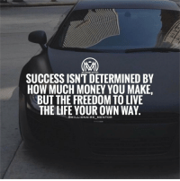 Memes, 🤖, and Determinant: MILLIONAIRE MENTOR  SUCCESS ISNT DETERMINED BY  HOW MUCH MONEY YOU MAKE,  BUT THE FREEDOM TO LIVE  THE LIFE YOUR OWN WAY  MILLIONAIRE MENTOR Are you tired of working 9-5? Click the link in my bio to learn the most profitable internet system that I use! 👇 @millionaire_mentor