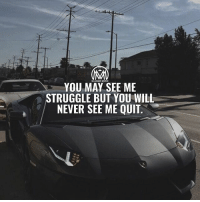 Life, Memes, and Struggle: MILLIONAIRE MENTOR  YOU MAY SEE ME  STRUGGLE BUT YOU WILL  NEVER SEE ME QUIT Struggles are required in order to survive in life, because in order to stand up, you gotta know what falling down is like 😉 Just remember to never give up, no matter how hard life gets! - life struggles success millionairementor