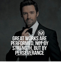 Memes, Perseverance, and World: MILLIONAIREMENTOR  GREAT WORKSARE  PERFORMED, NOT BY  STRENGTH, BUT BY  PERSEVERANCE  ENTOR Most of the important things in the world have been accomplished by people who have kept on trying then there seemed to be no hope at all. Perseverance is key! millionairementor perseverance