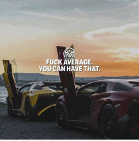 """Advice, Life, and Memes: MILLIONAIREN  FUCK AVERAGE.  YOU CAN HAVE THAT PLEASE! If you follow me… Don't be average! Like Nelson Mandela said, """"There's no passion to be found in settling for a life that is less than the one you are capable of living."""" So my millentor advice to you is… DON'T be average. Don't be """"good"""" or just """"great."""" Be phenomenal or be forgotten. 💯 - average success millionairementor"""