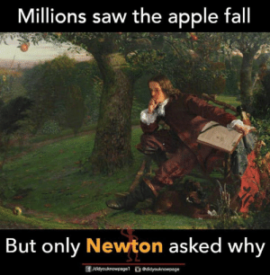 Apple, Fall, and Memes: Millions saw the apple fall  But only Newton asked why